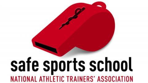 Image result for safe sports school